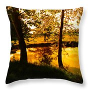 Golden Pond 3 Throw Pillow