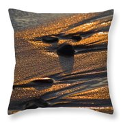 Golden Sand  Throw Pillow