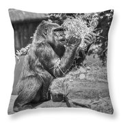 Gorilla Eats Black And White Throw Pillow
