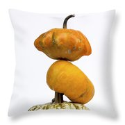 Gourds And Pumpkins Throw Pillow