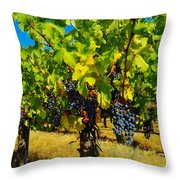 Grapes On The Vine Throw Pillow by Jeff Swan
