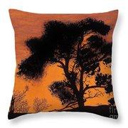 Gray Sky Sunset Throw Pillow