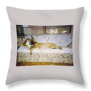 Great Dane And Calico Cat Throw Pillow