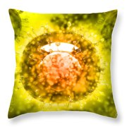 Group Of H5n1 Virus With Glassy View Throw Pillow