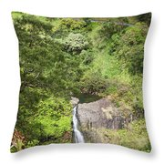Hana Waterfall Throw Pillow by Jenna Szerlag
