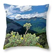 Hardy Shrub Throw Pillow