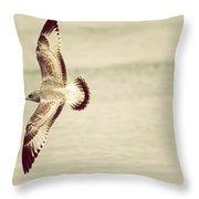 Herring Gull In Flight Throw Pillow by Karol Livote