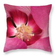 Hibiscus Moscheutos Named Luna Pink Swirl Throw Pillow