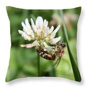 Honeybee On Clover Throw Pillow