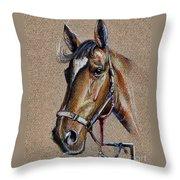 Horse Face - Drawing  Throw Pillow