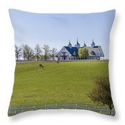 Horse Farm Throw Pillow