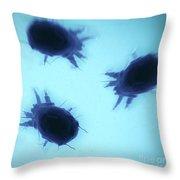House Dust Mites Throw Pillow
