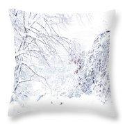 Hurricane Sandy Snow  Throw Pillow