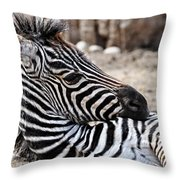 Idaho Falls - Tautphaus Park Zoo Throw Pillow