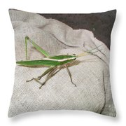 IImages From The Pantanal Throw Pillow