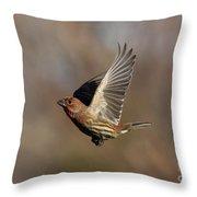 In Flight Throw Pillow
