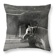 In The Captivity Throw Pillow