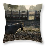 In The Frosty Morning Throw Pillow