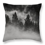 In The Steam Throw Pillow