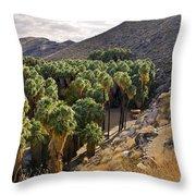 Indian Canyons - California Throw Pillow