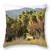 Indian Canyons Throw Pillow