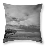Infrared Picture Of Nature Areas In The Netherlands Dwingelderveld Throw Pillow