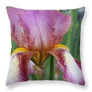 Iris 23 Throw Pillow