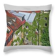 Ivy Courtyard Throw Pillow