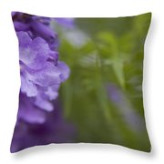 Jacaranda Mimosifolia Makawao Maui Hawaii Throw Pillow