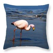 James Or Puna Flamingo Throw Pillow