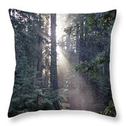 Jedediah Smith Redwoods State Park Redwoods National Park Del No Throw Pillow