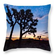 Josua Trees Beautifully Lit During Sunrise In Joshua Tree Nation Throw Pillow