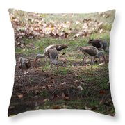 Juvenile Ibis Throw Pillow