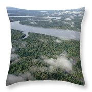 Kikori River In The Rainforest Kikori Throw Pillow