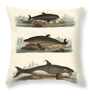 Kinds Of Whales Throw Pillow