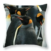 King Penguin Colony Throw Pillow
