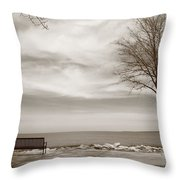 Lake And Park Bench Throw Pillow