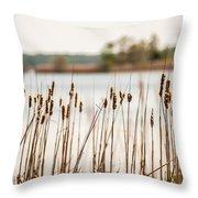 Lake Mattamuskeet Nature Trees And Lants In Spring Time  Throw Pillow