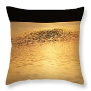 Last Rays Of Light Throw Pillow
