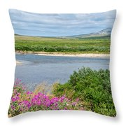 2-lay Of The Land-grizzly Bears In Moraine River In Katmai Np-ak Throw Pillow