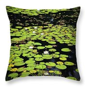 Lily Pads On Dark Water Throw Pillow