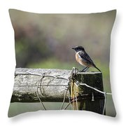 Litle Bird Throw Pillow