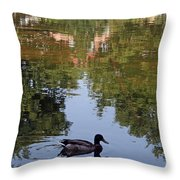Living In Reflections Throw Pillow
