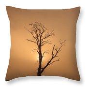 Loch Ard Glow Throw Pillow