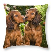 Long-haired Dachshunds Throw Pillow