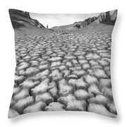 Long Walk Throw Pillow