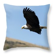 Looking Down On The World Throw Pillow