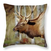 Male Elk Throw Pillow