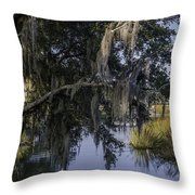 Lowcountry Creek Throw Pillow