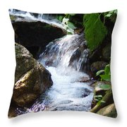 Lower Granite Falls Throw Pillow